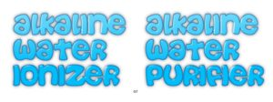 Alkaline Water Purifiers India Price